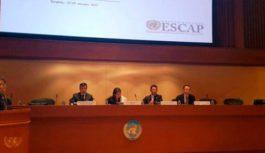 Кирилл Молодцов принял участие в первой сессии Комитета ЭСКАТО по энергетике