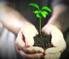 В Москве при поддержке РЭЭ пройдет VIII Международный форум «Экология»