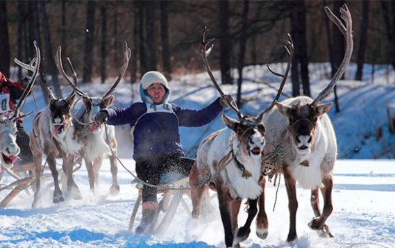 Г.П. Левин. Снижение энерготарифов для предприятий в Республике Саха (Якутия)