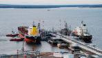 Медведев расширил порт Высоцк в Ленобласти для строительства СПГ-терминала