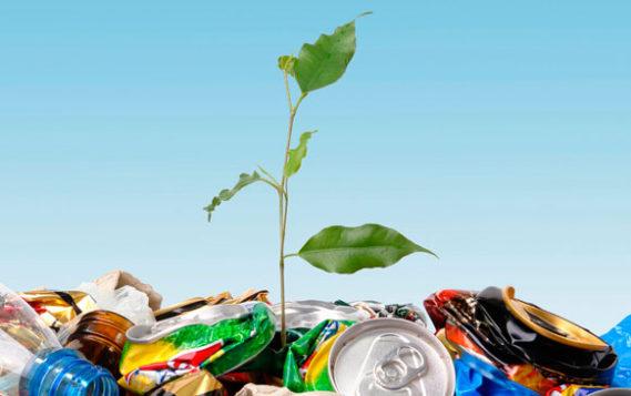 Приоритетные проекты помогут создать в РФ новую отрасль по переработке отходов