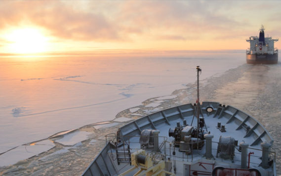 Арктическая разведка
