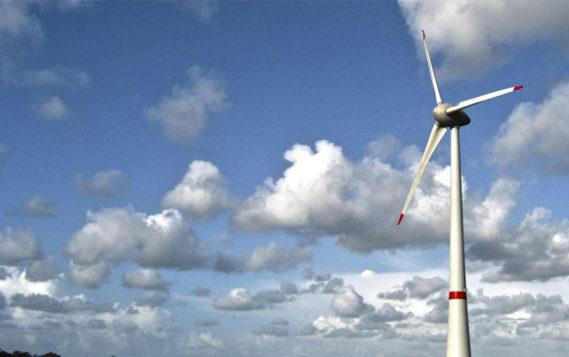Google и Apple критикуют правительство США за отмену программы «зеленой энергии»