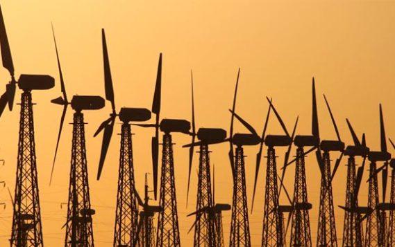 Китайские инвесторы помогут построить в Карелии ветропарк