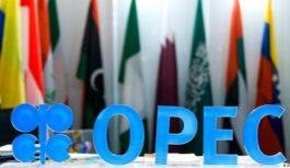 20 февраля в Вене пройдет заседание мониторингового техкомитета OPEC+