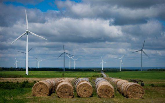 Зеленой энергетике урезали ожидания