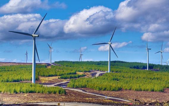 Россия направит на развитие возобновляемой энергетики до 2050 года 725 млрд рублей
