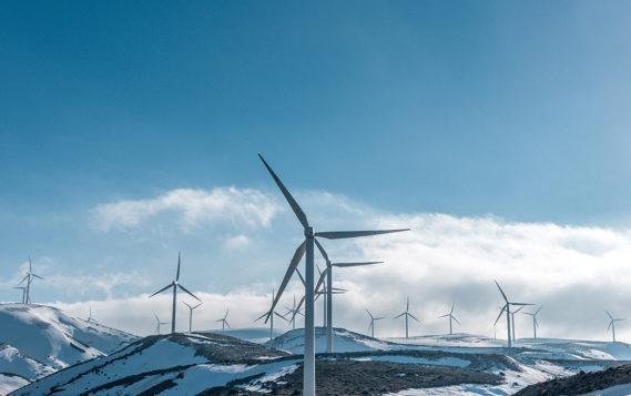Что тормозит развитие возобновляемой энергетики в России