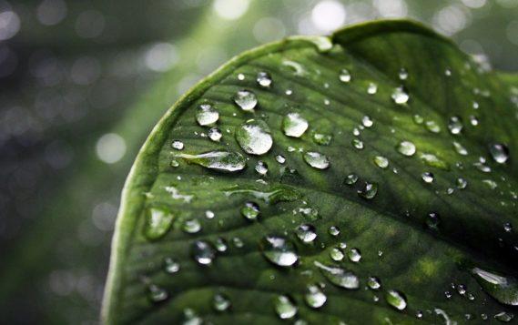 Прорыв в капельной электрогенерации: дожди станут новым источником энергии