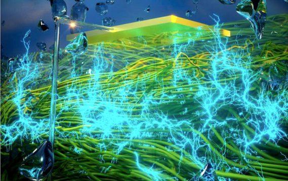 Белковые «нанопровода» позволили получать электричество прямо из воздуха