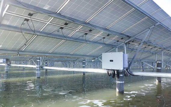 В Китае совместили солнечную энергетику и рыбоводство