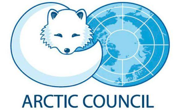 Владимир Путин поручил создать комитет по председательству РФ в Арктическом совете