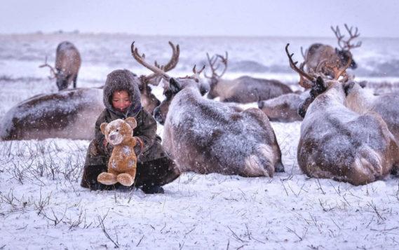 Поздравляем Ямало-Ненецкий автономный округ с 90-летием со дня образования!