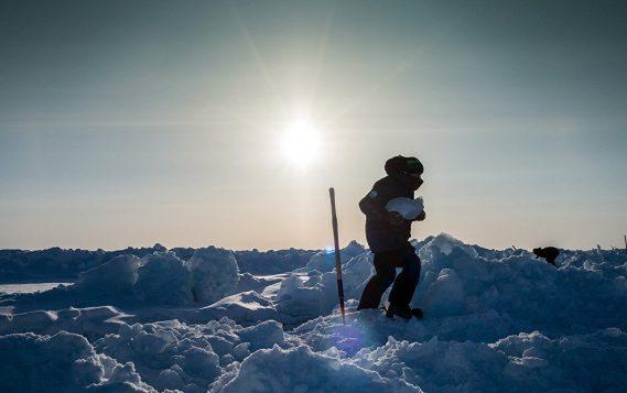 Правительство поддержит проведение международной экспедиции в Арктике